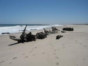 Shipwreck-skeleton-coast_1
